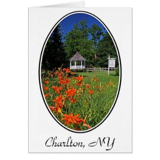 Parque de Hawley, Charlton, cartão de NY