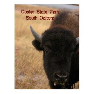 Parque estadual de Custer, cartão de South Dakota