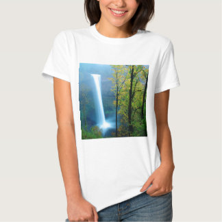 Parque estadual de prata sul da cachoeira tshirt