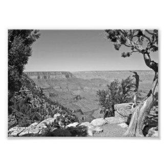 Parque nacional 3 do Grand Canyon de B&W Impressão De Foto