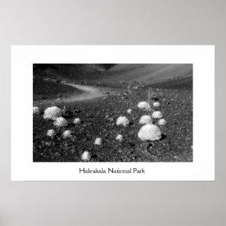 Parque nacional de Haleakala Poster