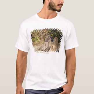 Parque nacional de Kruger, África do Sul Camiseta