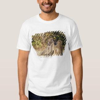 Parque nacional de Kruger, África do Sul T-shirt