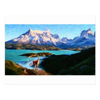 Parque nacional de Torres del Paine e o lama, Chil Cartão Postal