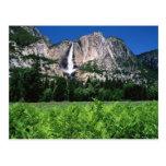 Parque nacional de Yosemite, Ca Cartao Postal
