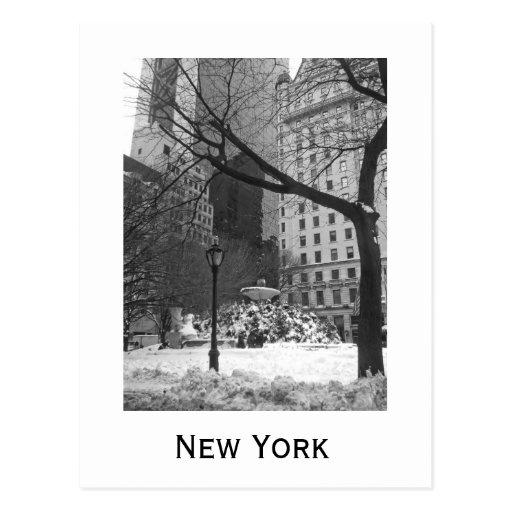 Parque nevado em New York Cartões Postais