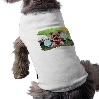 Páscoa - yorkshire terrier - Sassy Roupa Para Pets