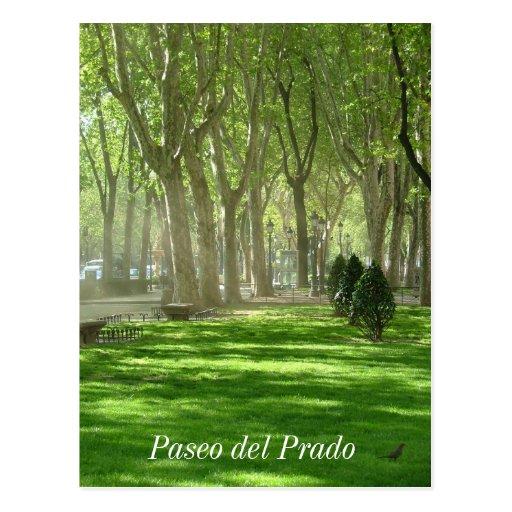 Paseo del Prado Cartoes Postais
