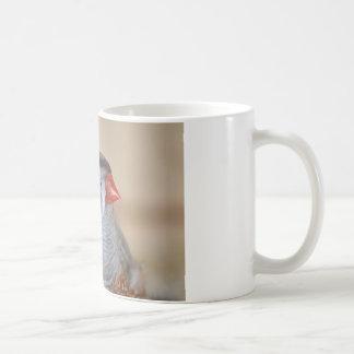 Passarinho de zebra caneca de café