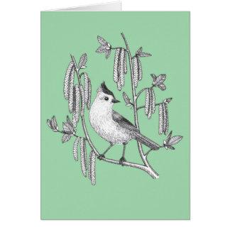 pássaro adornado do titmouse no cartão da árvore