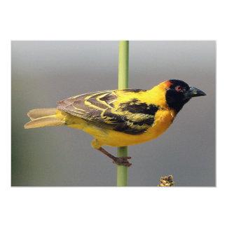 Pássaro amarelo convite 12.7 x 17.78cm