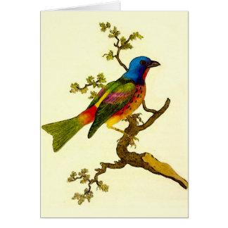 Pássaro Bunting pintado todo o cartão da ocasião