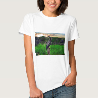 Pássaro Camisetas
