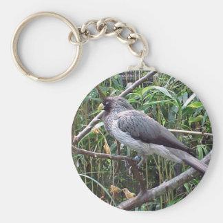 Pássaro Chaveiro