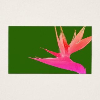 Pássaro cor-de-rosa do cartão de visita do paraíso