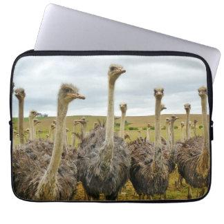 Pássaro da avestruz capa para laptop