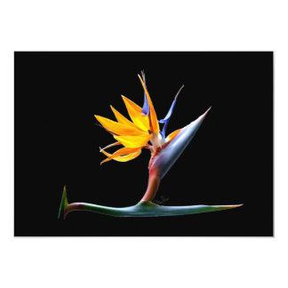 Pássaro da flor de paraíso convite 12.7 x 17.78cm
