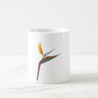 Pássaro da flor de paraíso (reginae do Strelitzia) Canecas