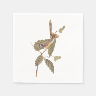 Pássaro da toutinegra da magnólia de Audubon do Guardanapo De Papel