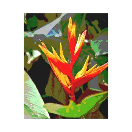Pássaro de canvas do paraíso impressão de canvas esticadas