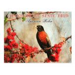 Pássaro de estado de Connecticut - pisco de peito  Cartoes Postais