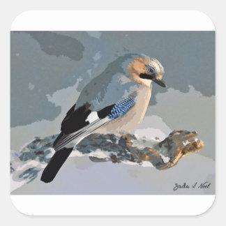 Pássaro de Jay no inverno Adesivo Quadrado