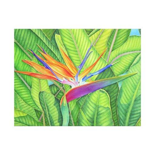 Pássaro de paraíso impressão de canvas envolvida