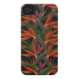 Pássaro de paraíso capa para iPhone 4 Case-Mate