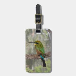 Pássaro do abelha-comedor do arco-íris, Austrália Etiqueta De Bagagem