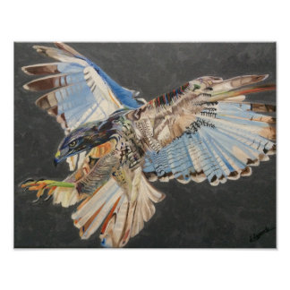 Pássaro do poster da rapina