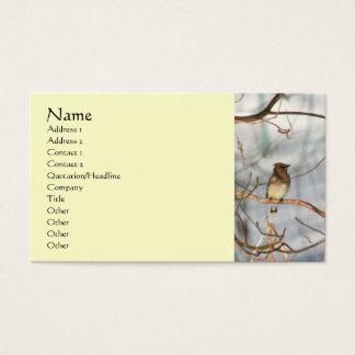 Pássaro do Waxwing no cartão de visita do animal