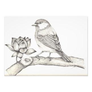 Pássaro e flor impressão de foto
