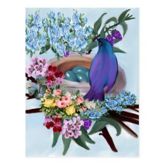 pássaro e ninho cartão postal