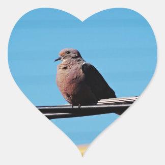 Pássaro em Brasil Adesivo Coração