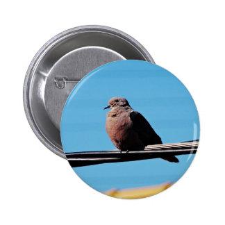 Pássaro em Brasil Bóton Redondo 5.08cm
