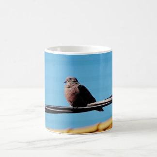 Pássaro em Brasil Caneca De Café