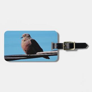 Pássaro em Brasil Etiqueta De Bagagem