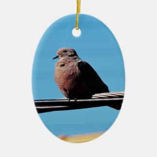 Pássaro em Brasil Ornamento De Cerâmica Oval
