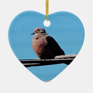 Pássaro em Brasil Ornamento De Cerâmica Coração