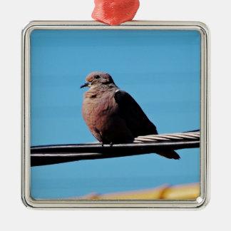 Pássaro em Brasil Ornamento Quadrado Cor Prata