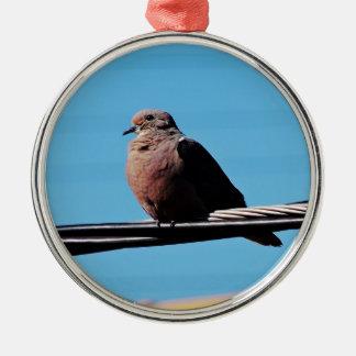 Pássaro em Brasil Ornamento Redondo Cor Prata