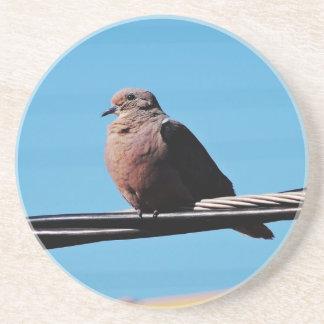 Pássaro em Brasil Porta Copos De Arenito
