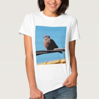 Pássaro em Brasil T-shirts