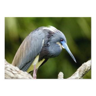 Pássaro em um registro convite 12.7 x 17.78cm