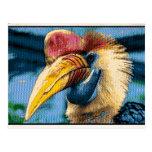 Pássaro Estranho Cartão Postal