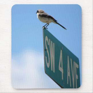 Pássaro na 4o avenida. mousepad