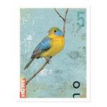 Pássaro No.5 Cartão Postal