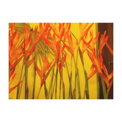 Pássaro--Paraíso Impressão Em Canvas