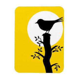 Pássaro preto adorável no ímã do ramo