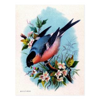 Pássaro retro do vintage em um cartão do ramo